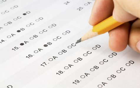 Students Are Not Test Scores