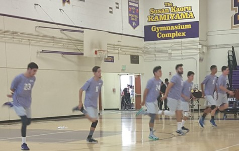 Eagle's Volleyball Crushes Maywood