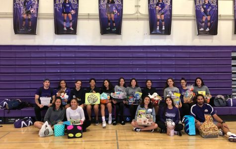 Volleyball Girls Season Recap
